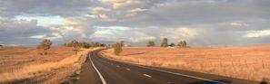 Lloguer de cotxes Gunnedah, Austràlia