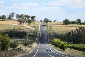Lloguer de cotxes Mudgee, Austràlia