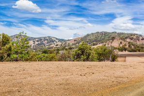Lloguer de cotxes Muswellbrook, Austràlia