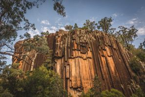 Lloguer de cotxes Narrabri, Austràlia