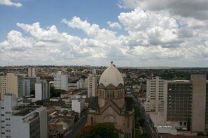 Lloguer de cotxes Araraquara, Brasil