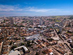 Lloguer de cotxes Franca, Brasil