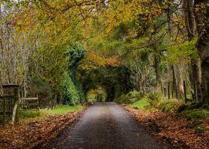 Lloguer de cotxes Omagh, Irlanda del Nord