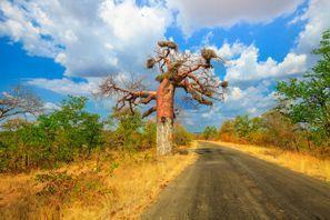 Lloguer de cotxes Makhado, Sud-àfrica