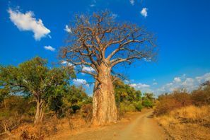 Lloguer de cotxes Musina, Sud-àfrica