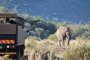 Lloguer de cotxes Vryburg, Sud-àfrica